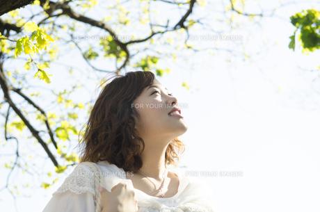 緑をバックに空を見上げる女性の素材 [FYI01076844]