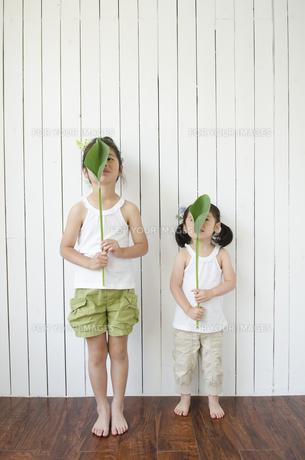 白いノースリーブを着て葉っぱで顔を隠している姉妹の素材 [FYI01077170]