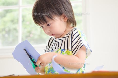紙を切っている男の子の素材 [FYI01077635]
