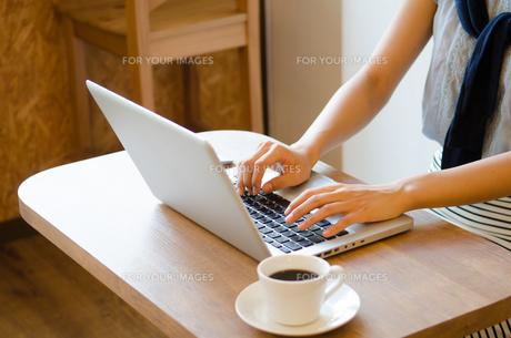 カフェでノートパソコンで仕事をしている女性の手元の素材 [FYI01077708]