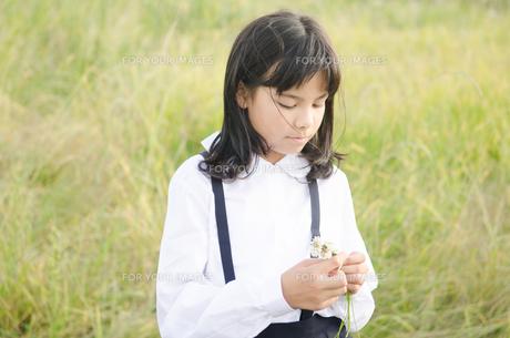 シロツメクサを持っている女の子の素材 [FYI01077867]