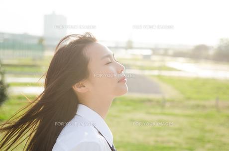 目をつぶっている女子学生の横顔の素材 [FYI01077872]