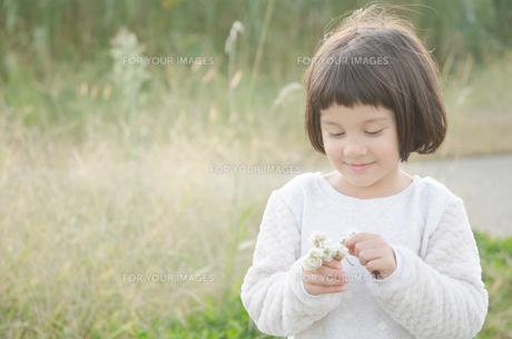 シロツメクサを持っている女の子の素材 [FYI01077878]