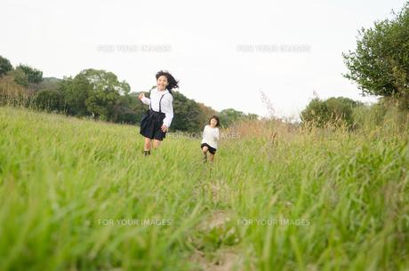 草むらを走る姉妹の素材 [FYI01077879]