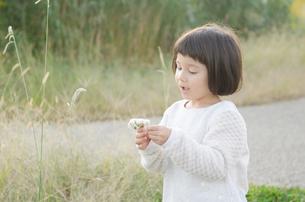 シロツメクサを持っている女の子の素材 [FYI01077921]