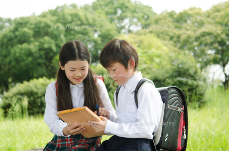 タブレットで勉強をしている小学生2人の素材 [FYI01077958]