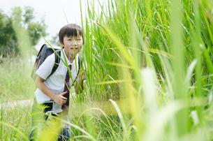 ランドセルを背負って草むらにいる男の子の素材 [FYI01077965]