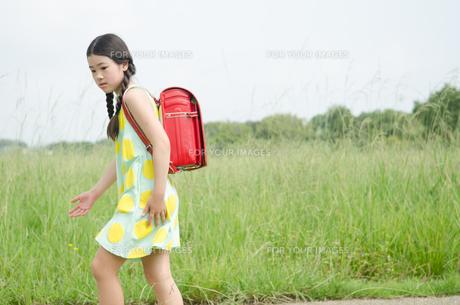 ランドセルを背負って草むらにいる女の子の素材 [FYI01077968]
