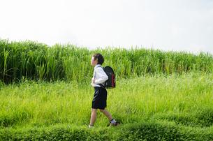 ランドセルを背負って草むらを歩いている男の子の素材 [FYI01077970]