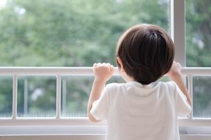 窓の外を見ている男の子の素材 [FYI01078036]