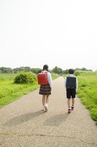ランドセルを背負って歩く小学生2人の後ろ姿の素材 [FYI01078057]
