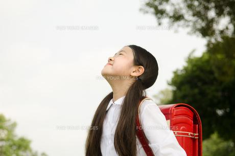 ランドセルを背負って深呼吸をする女の子の素材 [FYI01078062]