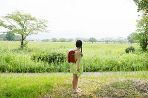 ランドセルを背負って遠くを見ている女の子の素材 [FYI01078109]