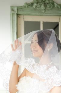 ベールを掛けたドレス姿の女性の素材 [FYI01078193]
