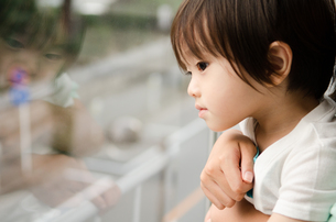 窓の外を見ている男の子の素材 [FYI01078194]