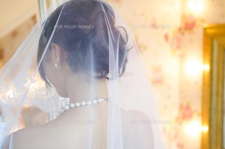 ベールを掛けているドレス姿の女性の後ろ姿の素材 [FYI01078324]