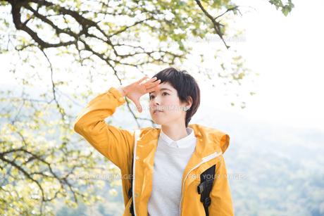 木をバックに遠くを見る女性の素材 [FYI01078381]