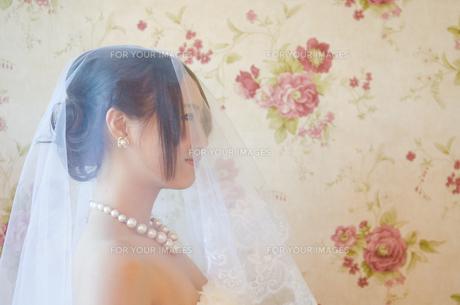 ベールを掛けているドレス姿の女性の横顔の素材 [FYI01078384]