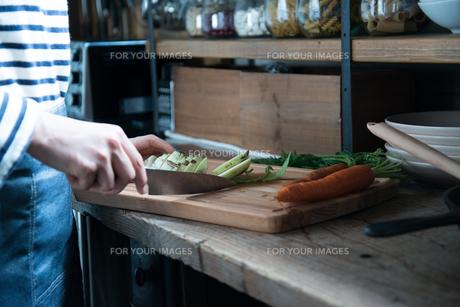 キッチンで野菜を切っている女性の素材 [FYI01078405]