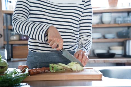 キッチンで野菜を切っている女性の手元の素材 [FYI01078423]