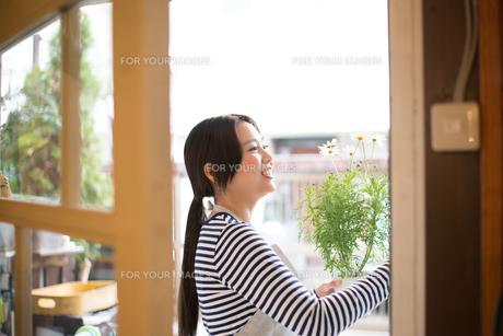 扉の向こうでお花の鉢を持っている女性の素材 [FYI01078606]