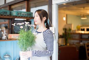 お花の鉢を持っている女性の素材 [FYI01078608]