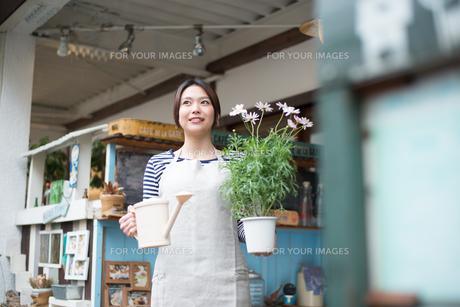 お花の鉢を持って笑っている女性の素材 [FYI01078642]