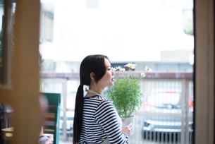 扉の向こうでお花の鉢を持っている女性の素材 [FYI01078687]