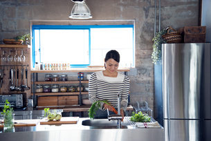 キッチンで野菜を洗っている女性の素材 [FYI01078721]