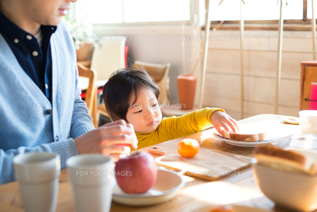 朝食を食べている家族の素材 [FYI01078725]