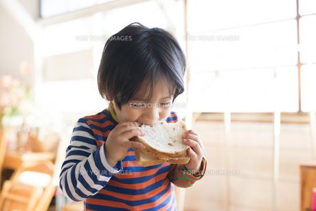 トーストを食べている男の子の素材 [FYI01078885]