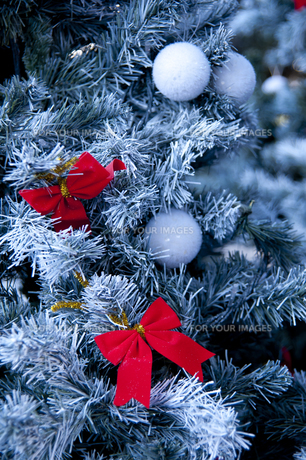 クリスマスツリーに飾られた赤いリボンの素材 [FYI01079168]