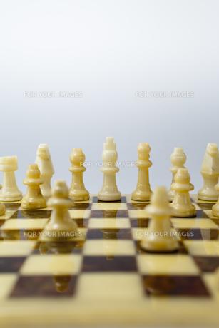 凛と立つチェスの駒の素材 [FYI01079367]