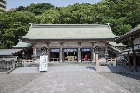 照国神社拝殿風景の素材 [FYI01080587]