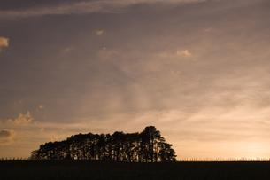 スイスジュネーブ近郊夕景の素材 [FYI01081893]