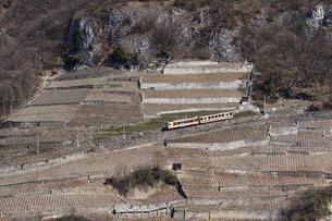 スイス エイグル レザンへの登山列車の素材 [FYI01082479]