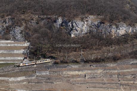スイス エイグル レザンへの登山列車の素材 [FYI01082488]