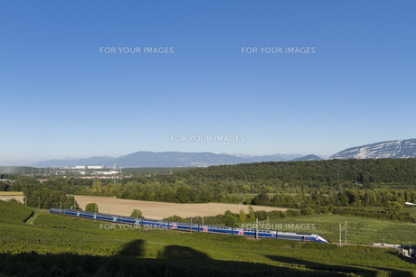 TGVの素材 [FYI01082499]