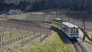 スイス エイグル Le Sepeyへの登山列車の素材 [FYI01082561]