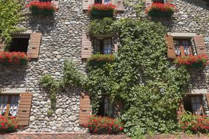 フランス イヴォアホテルの窓の素材 [FYI01083199]