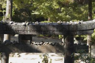 鳥居と石の素材 [FYI01083406]