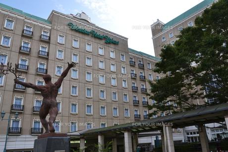 ウィシュトンホテル・ユーカリの素材 [FYI01087233]