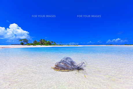 青い空と海の素材 [FYI01088012]