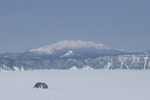 全面結氷の摩周湖の素材 [FYI01092655]