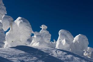 蔵王地蔵山頂の樹氷の素材 [FYI01096444]