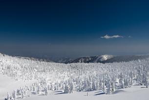 蔵王地蔵山頂の樹氷の素材 [FYI01096448]