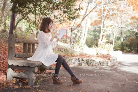 秋の紅葉した公園のベンチで読書をする女性の素材 [FYI01096501]
