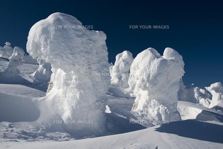 蔵王地蔵山頂の樹氷の素材 [FYI01096532]