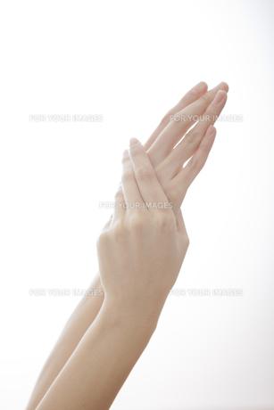 女性の手の素材 [FYI01096580]