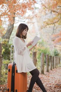 秋の紅葉した公園でトランクに座って本を読む女性の素材 [FYI01096584]